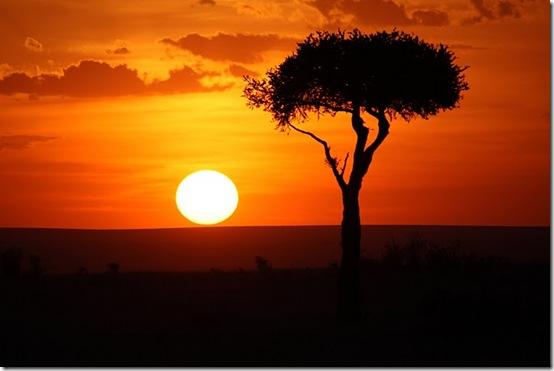 Glimt fra Kenya