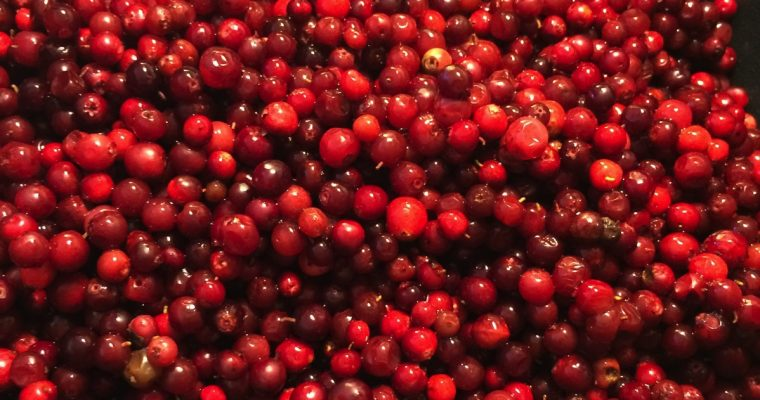 Rørte tyttebær med akevitt